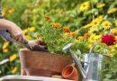 Uređivanje vrta za svako godišnje doba